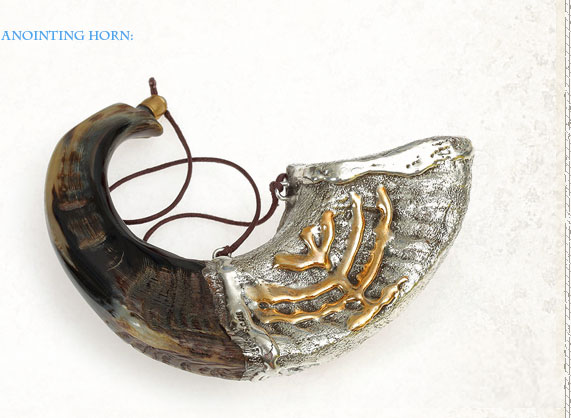Special Shofars Anointing Horn