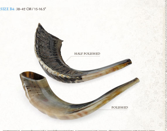 how to play shofar horn
